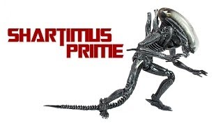 SH MonsterArts Alien Big Chap Tamashii Nations Bandai Action Figure Review