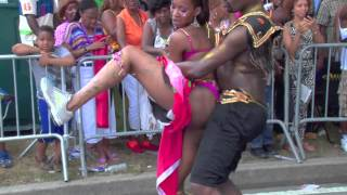 West Indian Day Parade 2013 part 8