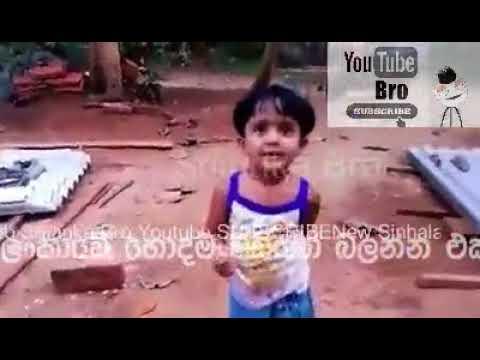 Xxx Mp4 ලංකාවේ පට්ට වීඩියෝ Sinhala Best Video 3gp Sex