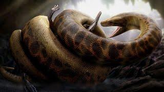 Dünyanın En Büyük 5 Yılanı