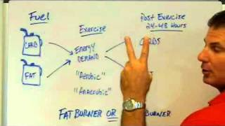 Are You A Sugar Burner Or Fat Burner With Exercise?