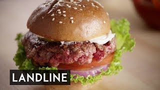 Fake Meat: the growth in popularity of artificial meat