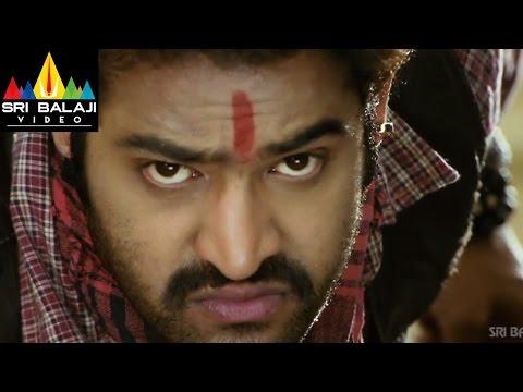 Xxx Mp4 Shakti Telugu Full Movie Part 2 14 Jr NTR Ileana Sri Balaji Video 3gp Sex