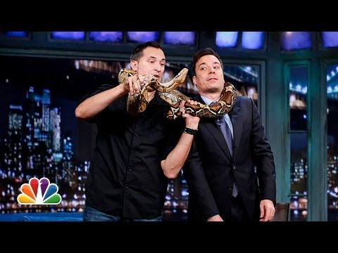 Jeff Musial Baby Kangaroo Cougar Boa Constrictor Part 1 Late Night with Jimmy Fallon