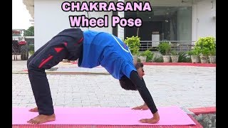 How to do Chakrasana or The Wheel Pose in hindi with PriyVimal