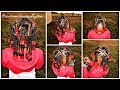 Download Video Download Little Girls Hairstyle Beads Braids & Twists 3GP MP4 FLV