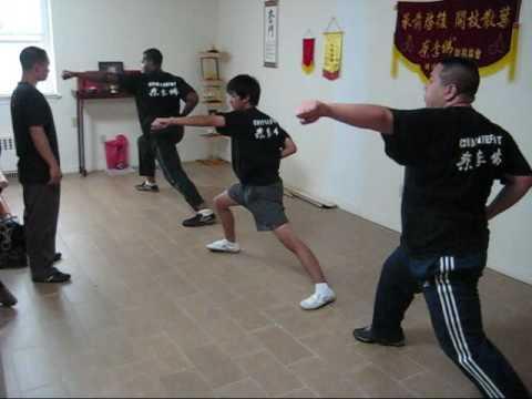 Choy Lee Fut Training