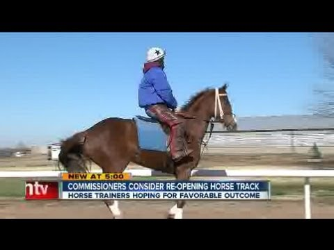 Horse trainers in limbo