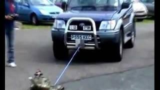 اصغر دبابه حربية بالعالم تسحب سيارة ؟!!
