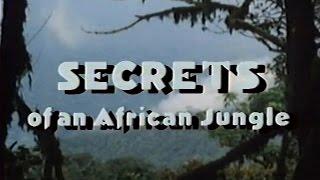 Secrets of an African Jungle (1986)