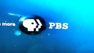 PBS 2015 Logo ID