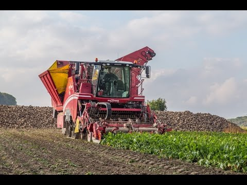 GRIMME | Best of Beet Technology 2017