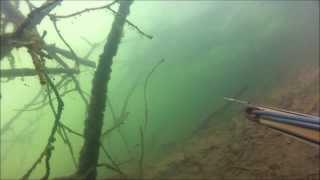 pesca sub rio grande primeiro mergulho com a gopro