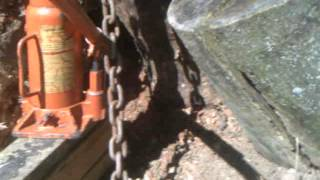 removing poplar stump/tree mostly by hand