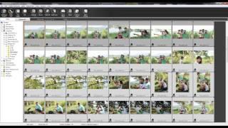 Convert Multiple RAW to JPEG كيفية تحويل مجموعة صور خام (راو) الى جي بيغ