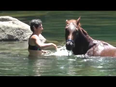 Xxx Mp4 Lady And Her Horse 3gp Sex