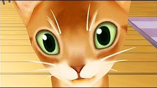 Crazy Kittens / Cartoon Games Kids TV
