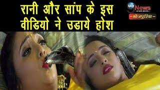 रानी चटर्जी और सांप के बीच इस विडियो को जिसने भी देखा ,वो हो गया हैरान, देखें विडियो | Rani Thriller