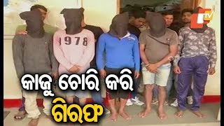 5 dacoits arrested for stealing cashew nuts from Koraput mill