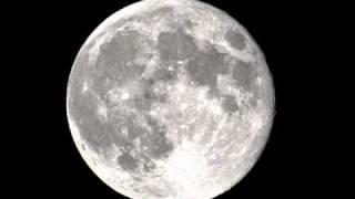Anne Susanne Hynne  -  The Moon's A Harsh Mistress