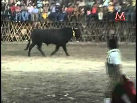 el sinaloense la leyenda del toro