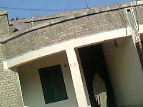 Chaudhary safdar  wapda colony kot addu  Ghashti Sex.Wapda Mulazim