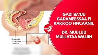 MO'AA TV Life show Ep 51 Gadi ba'uu gadameessaa fi Rakkoo fincaanii. Dr Muuluu Mullataa waliin