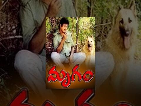 Xxx Mp4 Mrugam Telugu Full Movie Mammootty Sunitha Oorvashi Sashi Mango Videos 3gp Sex