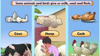 Learn Grade 2 - EVS - Natural Resources