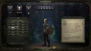 Pillars of Eternity Weapon and Armor review