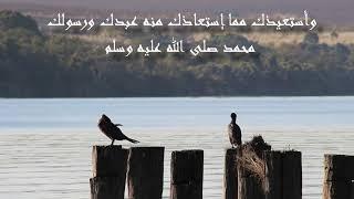 اللهم انى اسالك من الخير كله | على محمد امين
