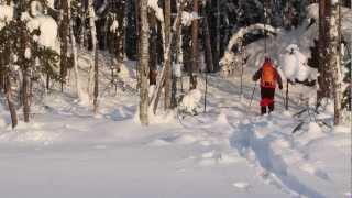HOK HOK! Testing Altai Skis Hok