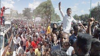 Caalaa Bultumee |  Maastar Pilaanii *REMIX*  |  New Oromo Music 2019