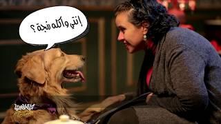 لايڤ من الدوبلكس الموسم السادس | الأبلة مع الكلاب وأصحابهم | الحلقة الثالثة عشر (ج١)