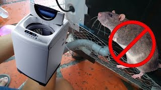 How to protect your Panasonic washing machine from rat