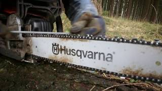 PROFESSIONAL How to Sharpen a Chainsaw by hand with a file!!!