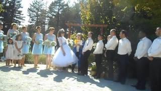 Darren & Stephanie Wedding August 6, 2016, Sebastopol, CA