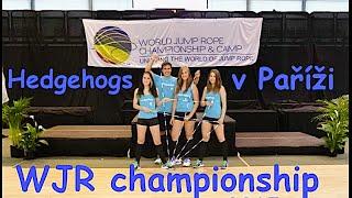 Hedgehogs - WJR Championship Paris 2015