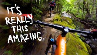 Quebec's big ride masterpiece | Mountain Biking Neilson at Vallée Bras-du-Nord
