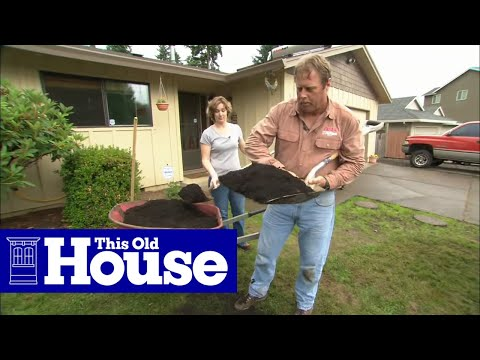 How to Fix a Patchy Weedy Lawn This Old House