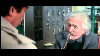 Pink Panther - Peter Sellers as Clouseau,