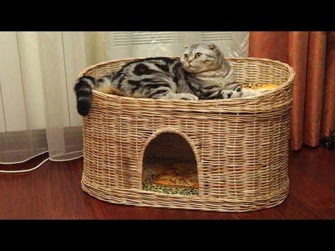 Мастер класс кошачий домик из газетных трубочек