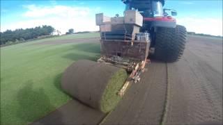 Hallmarket Big Roll Harvester