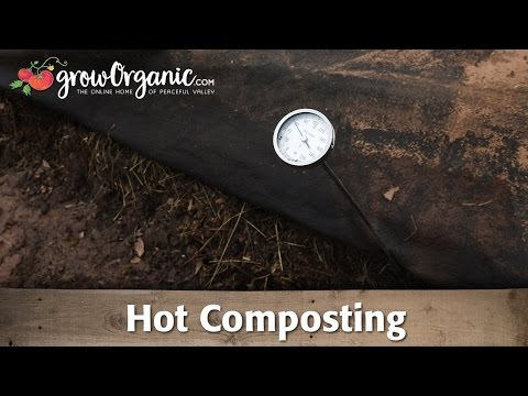 Xxx Mp4 What Is Hot Composting And How To Use It In Your Garden 3gp Sex