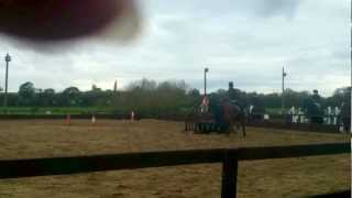 Sofie and Ruby - Cross Country Jumps