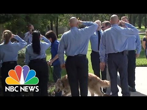 9/11 Search Dog Saluted during Final Walk Into Vet's Office