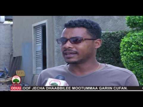 Xxx Mp4 Qisaasama Bittaa Bulchiinsi Gamoowwan Oromiyaa OBN Muddee 17 2011 3gp Sex