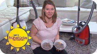 Was können ENERGIESPARENDE STAUBSAUGER? | SAT.1 Frühstücksfernsehen | TV