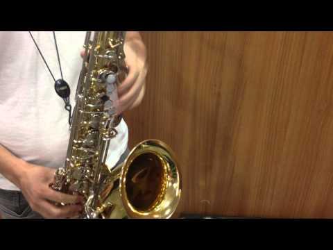 Sax Tenor Yamaha YTS-23 à venda.