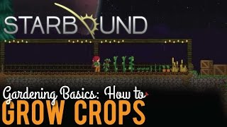 How to Grow Crops in Starbound 1.0